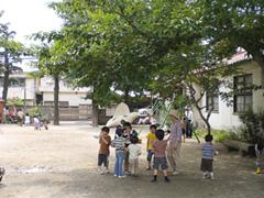 園庭(初夏)